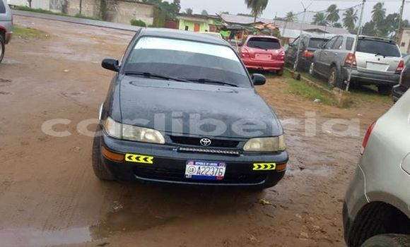 Buy Used Toyota Corolla Black Car in Monrovia in Montserrado County