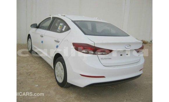 Buy Import Hyundai Elantra White Car in Import - Dubai in Bomi County