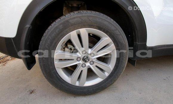 Buy Import Kia Sportage White Car in Import - Dubai in Bomi County
