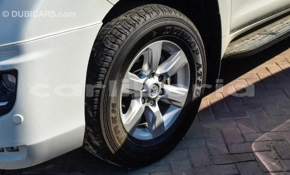 Buy Import Toyota Prado White Car in Import - Dubai in Bomi County