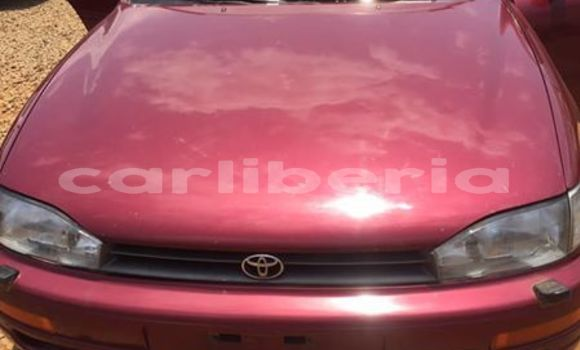 Buy Used Toyota Camry Red Car in Monrovia in Montserrado County