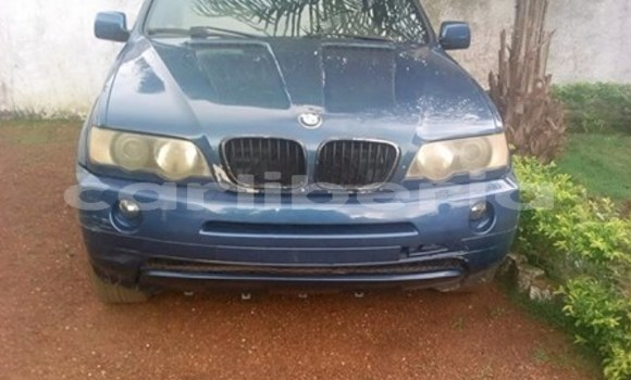 Buy Used BMW X5 Blue Car in Barclayville in Grand Kru County