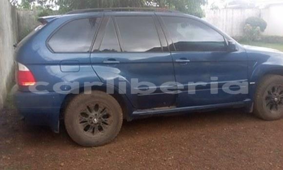 Buy Used BMW X5 Blue Car in Monrovia in Montserrado County
